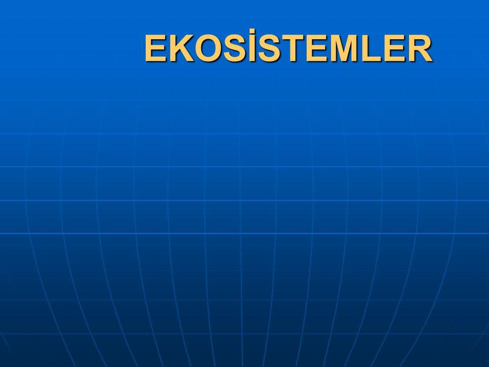 EKOSİSTEMLER