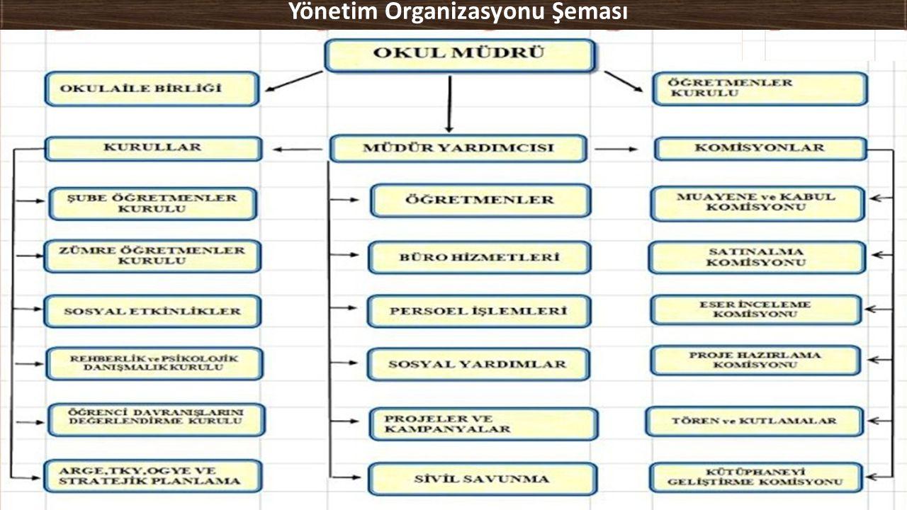 Yönetim Organizasyonu Şeması