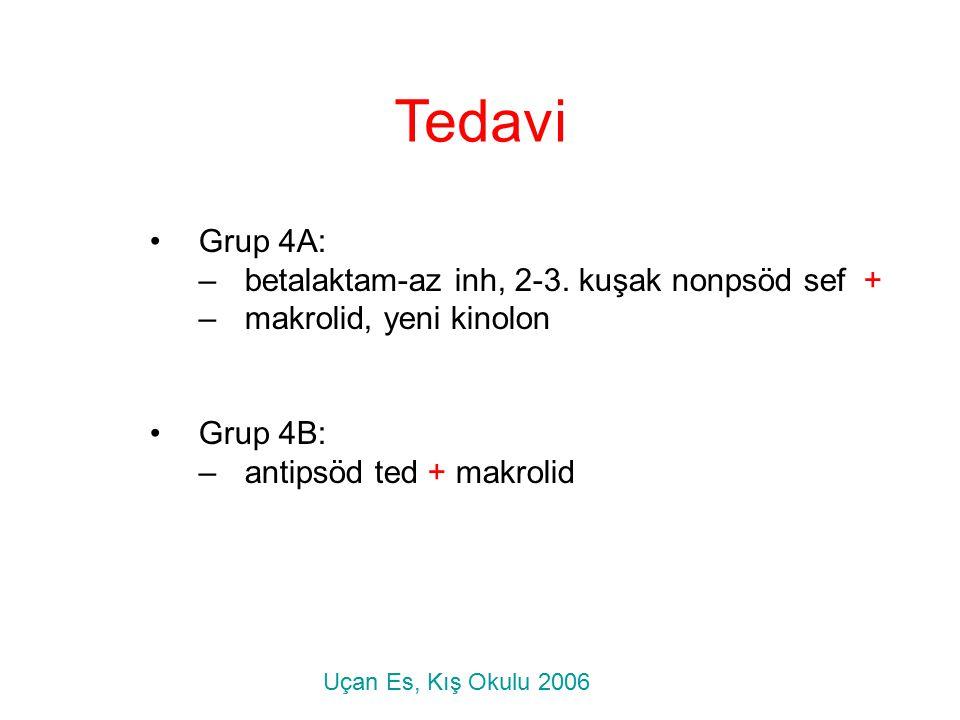 Tedavi Grup 4A: –betalaktam-az inh, 2-3. kuşak nonpsöd sef + –makrolid, yeni kinolon Grup 4B: –antipsöd ted + makrolid Uçan Es, Kış Okulu 2006