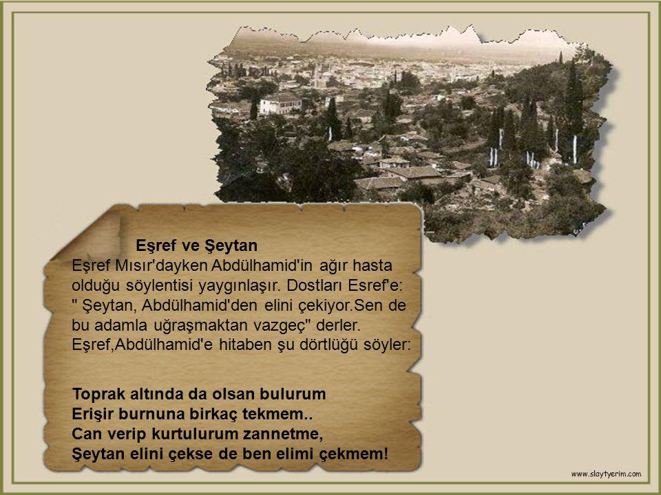 Soru - Cevap Eşref,yerine vekil bırakarak İzmir'e gidiyor.Morali biraz bozuk.Yol arkadaşı ise biraz geri zekâlı, Eşref'e aptalca sorular soruyor. Bir