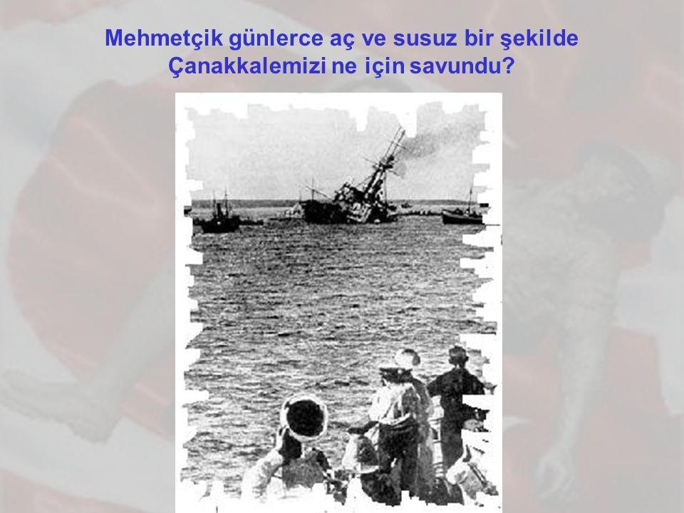 Mehmetçik günlerce aç ve susuz bir şekilde Çanakkalemizi ne için savundu?