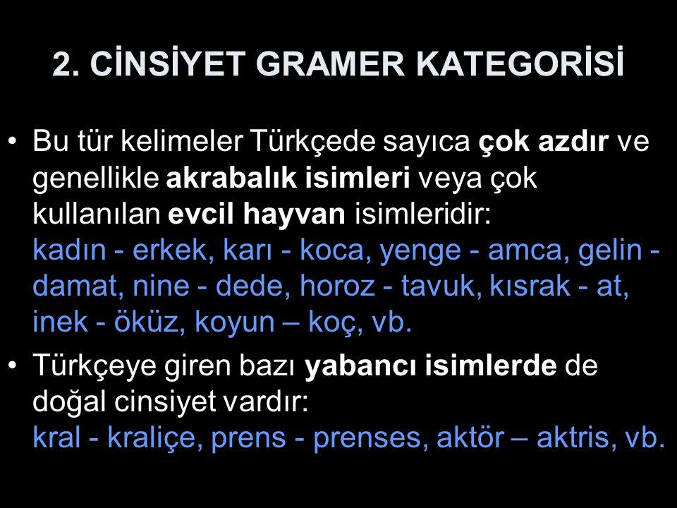 2. CİNSİYET GRAMER KATEGORİSİ Bu tür kelimeler Türkçede sayıca çok azdır ve genellikle akrabalık isimleri veya çok kullanılan evcil hayvan isimleridir