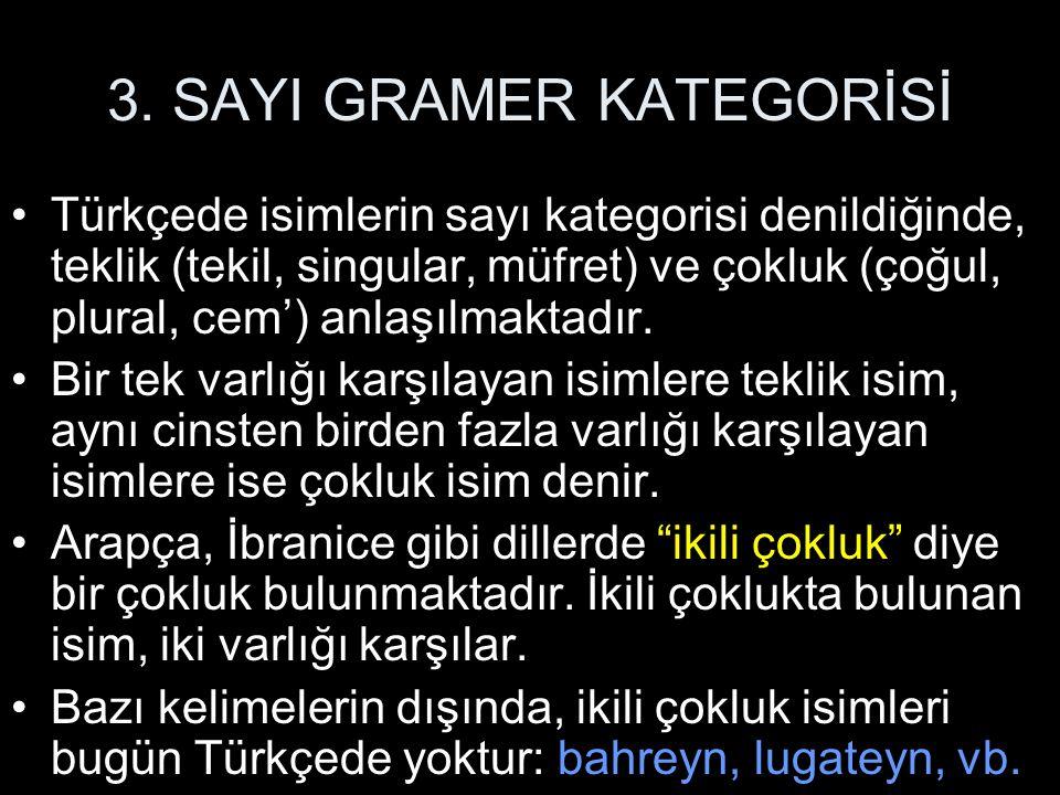 3. SAYI GRAMER KATEGORİSİ Türkçede isimlerin sayı kategorisi denildiğinde, teklik (tekil, singular, müfret) ve çokluk (çoğul, plural, cem') anlaşılmak