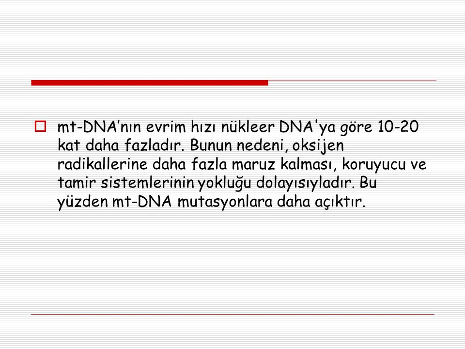  mt-DNA'nın evrim hızı nükleer DNA'ya göre 10-20 kat daha fazladır. Bunun nedeni, oksijen radikallerine daha fazla maruz kalması, koruyucu ve tamir s