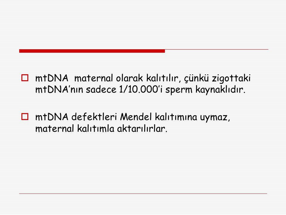  mtDNA maternal olarak kalıtılır, çünkü zigottaki mtDNA'nın sadece 1/10.000'i sperm kaynaklıdır.  mtDNA defektleri Mendel kalıtımına uymaz, maternal