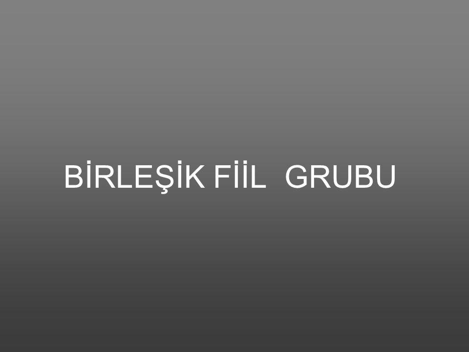 BİRLEŞİK FİİL GRUBU
