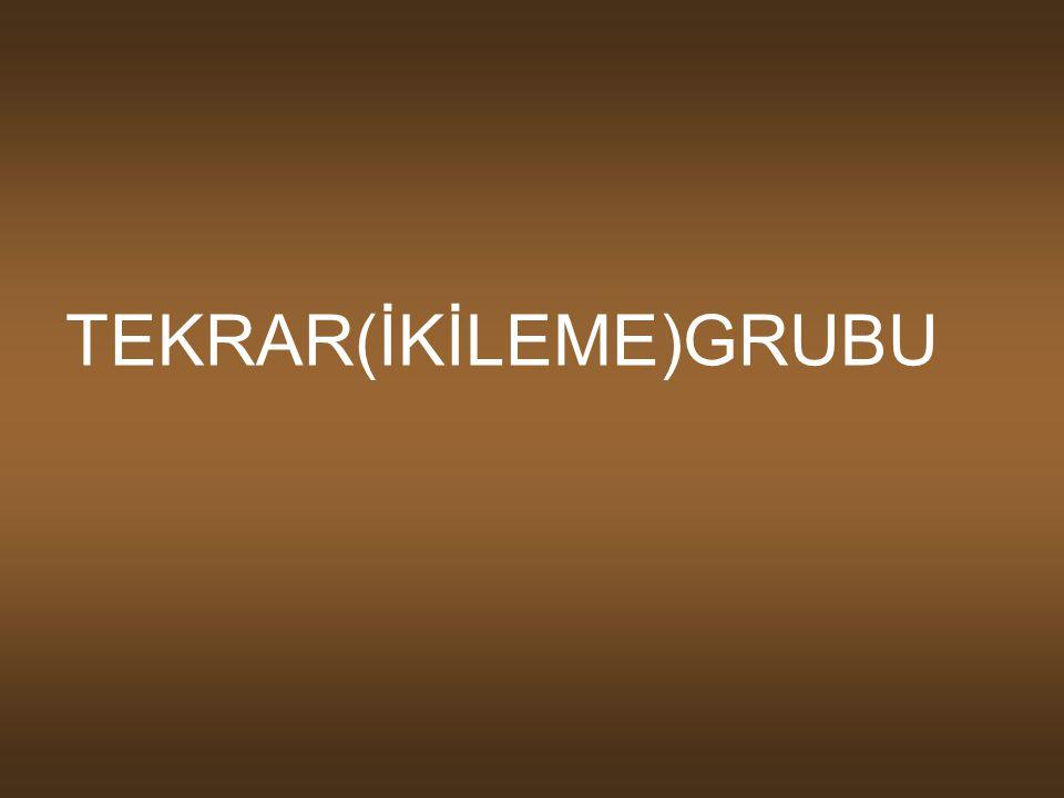 TEKRAR(İKİLEME)GRUBU
