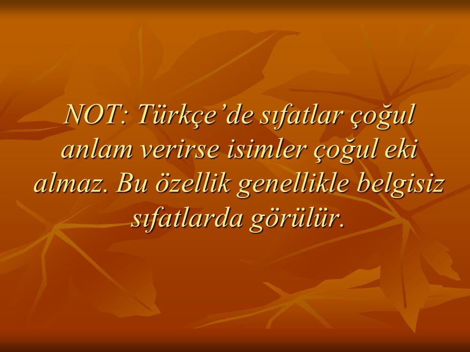 NOT: Türkçe'de sıfatlar çoğul anlam verirse isimler çoğul eki almaz. Bu özellik genellikle belgisiz sıfatlarda görülür.