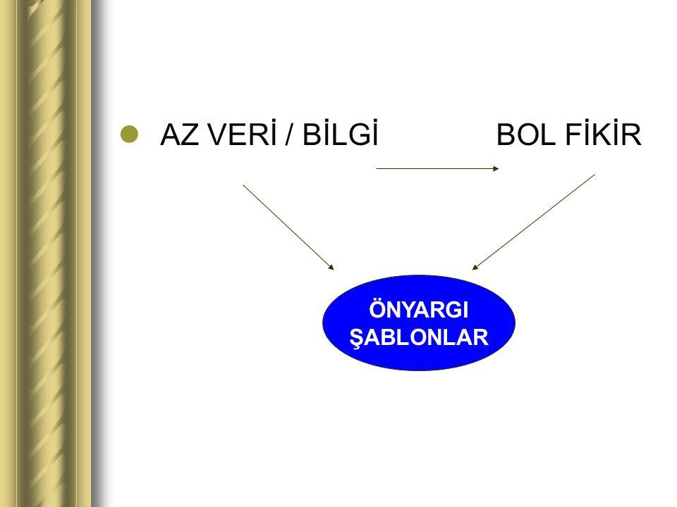 AZ VERİ / BİLGİ BOL FİKİR ÖNYARGI ŞABLONLAR