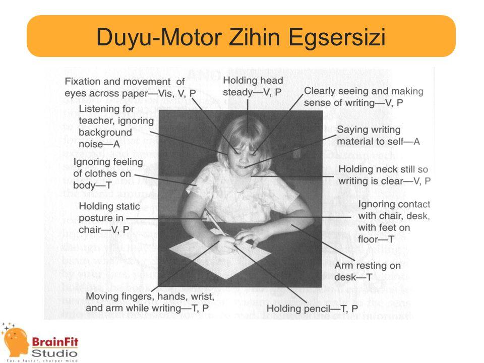Duyu-Motor Zihin Egsersizi Hareket & Öğrenme