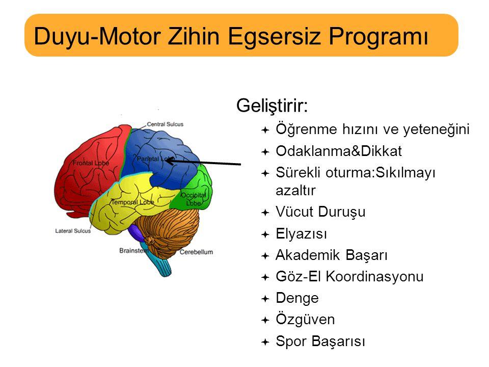 MOVES Duyu-Motor Zihin Egsersiz Programı 2x/Hafta, 55dk/ders, 20ders/kurs