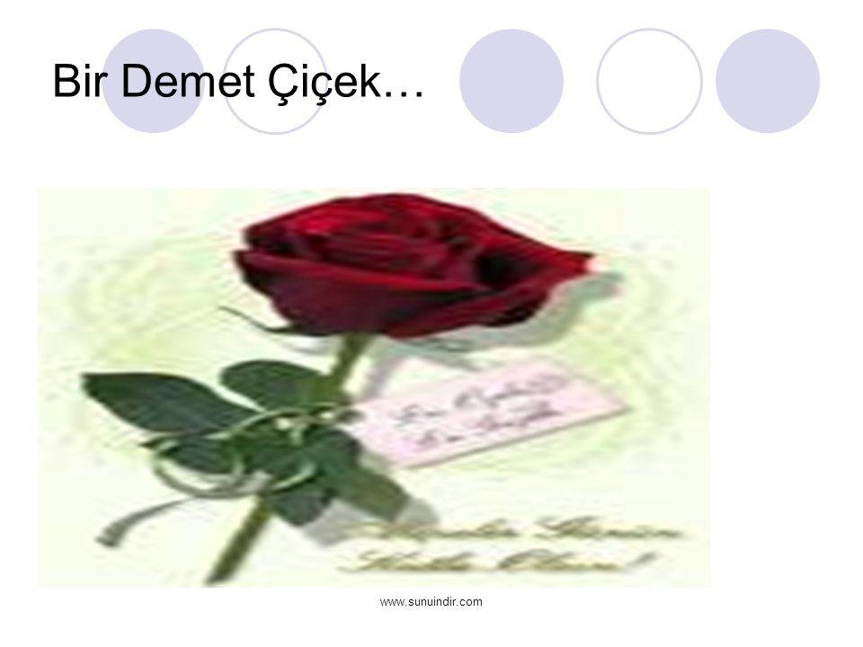 www.sunuindir.com Bir Demet Çiçek…