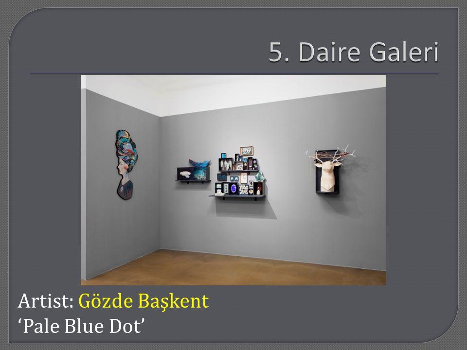Artist: Gözde Başkent 'Pale Blue Dot'
