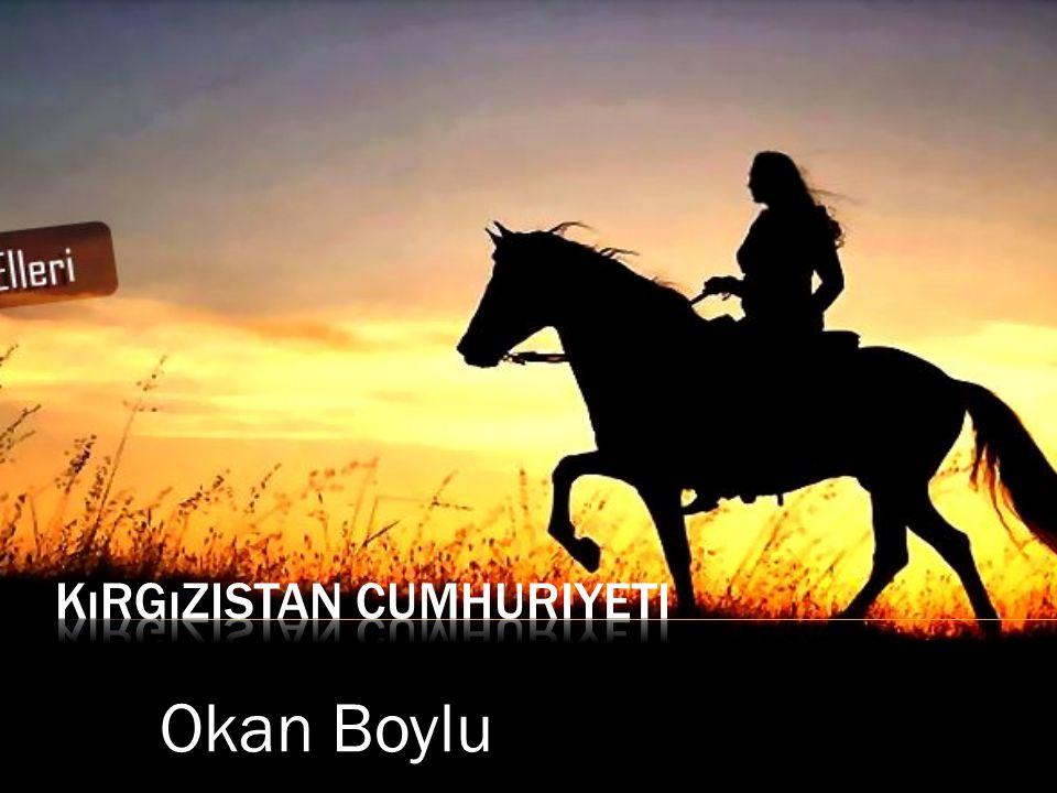 Okan Boylu