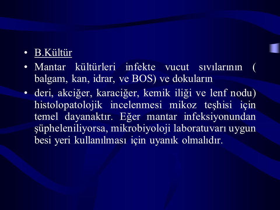B.Kültür Mantar kültürleri infekte vucut sıvılarının ( balgam, kan, idrar, ve BOS) ve dokuların deri, akciğer, karaciğer, kemik iliği ve lenf nodu) hi