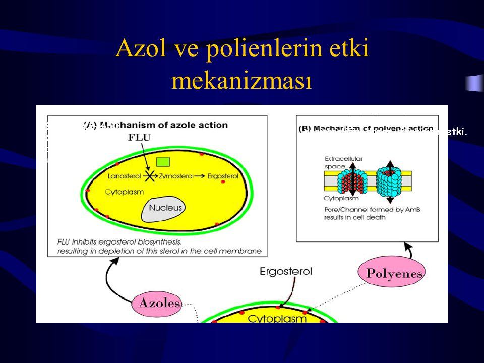 Azol ve polienlerin etki mekanizması Sitokrom P-450 ailesinden 14  - demetilazın inhibisyonu Ergosterole bağlanarak zar geçirgenliğini bozar, fungisidal etki.