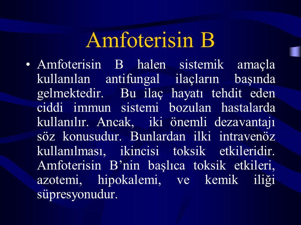 Amfoterisin B Amfoterisin B halen sistemik amaçla kullanılan antifungal ilaçların başında gelmektedir. Bu ilaç hayatı tehdit eden ciddi immun sistemi