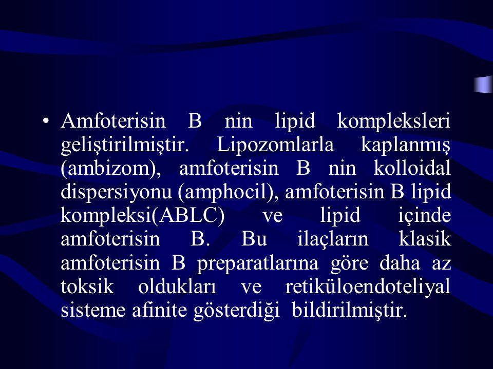 Amfoterisin B nin lipid kompleksleri geliştirilmiştir. Lipozomlarla kaplanmış (ambizom), amfoterisin B nin kolloidal dispersiyonu (amphocil), amfoteri