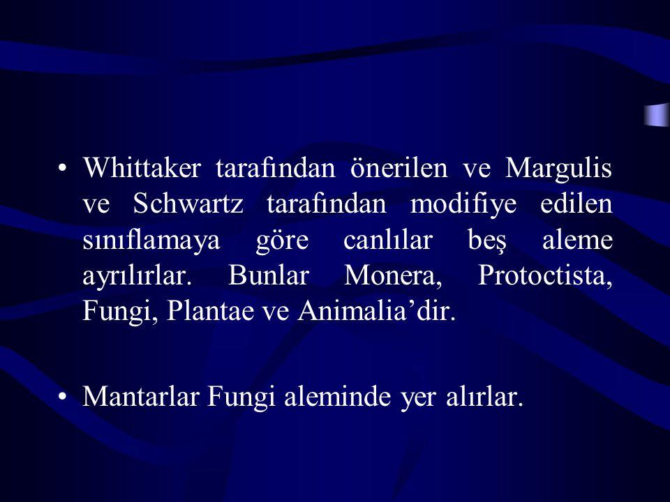 Whittaker tarafından önerilen ve Margulis ve Schwartz tarafından modifiye edilen sınıflamaya göre canlılar beş aleme ayrılırlar.