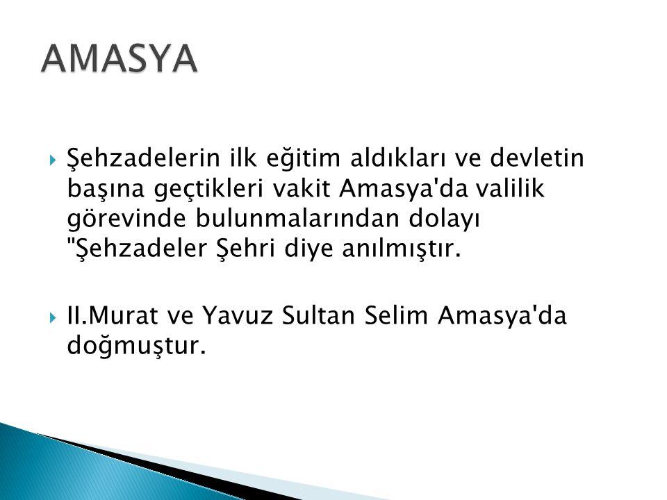  Şehzadelerin ilk eğitim aldıkları ve devletin başına geçtikleri vakit Amasya da valilik görevinde bulunmalarından dolayı Şehzadeler Şehri diye anılmıştır.