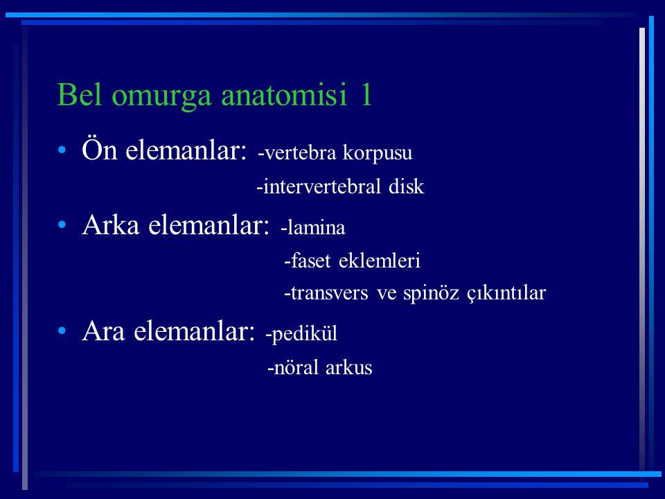 Bel omurga anatomisi 1 Ön elemanlar: -vertebra korpusu -intervertebral disk Arka elemanlar: -lamina -faset eklemleri -transvers ve spinöz çıkıntılar A