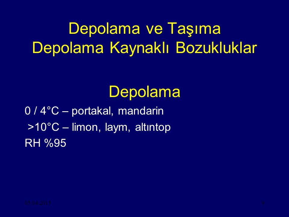 05.04.20159 Depolama ve Taşıma Depolama Kaynaklı Bozukluklar Depolama 0 / 4°C – portakal, mandarin >10°C – limon, laym, altıntop RH %95