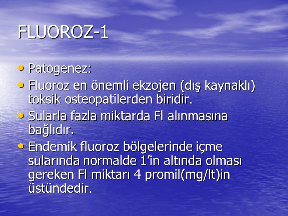 FLUOROZ-1 Patogenez: Patogenez: Fluoroz en önemli ekzojen (dış kaynaklı) toksik osteopatilerden biridir. Fluoroz en önemli ekzojen (dış kaynaklı) toks