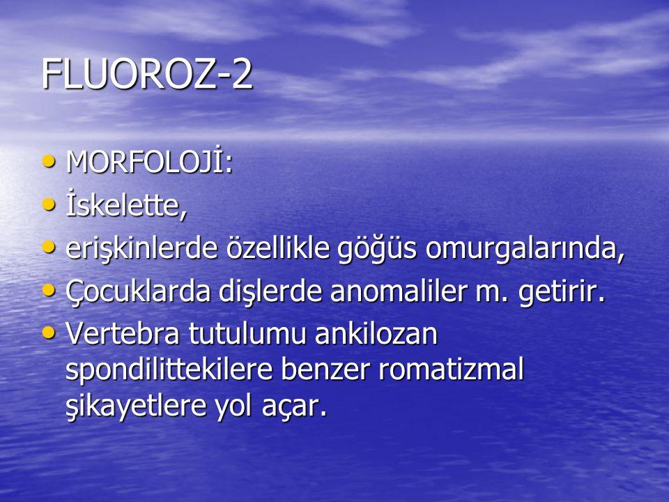 FLUOROZ-2 MORFOLOJİ: MORFOLOJİ: İskelette, İskelette, erişkinlerde özellikle göğüs omurgalarında, erişkinlerde özellikle göğüs omurgalarında, Çocuklar