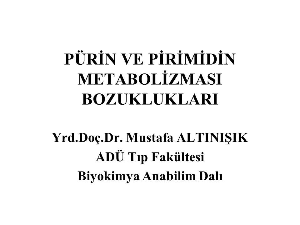 PÜRİN VE PİRİMİDİN METABOLİZMASI BOZUKLUKLARI Yrd.Doç.Dr. Mustafa ALTINIŞIK ADÜ Tıp Fakültesi Biyokimya Anabilim Dalı