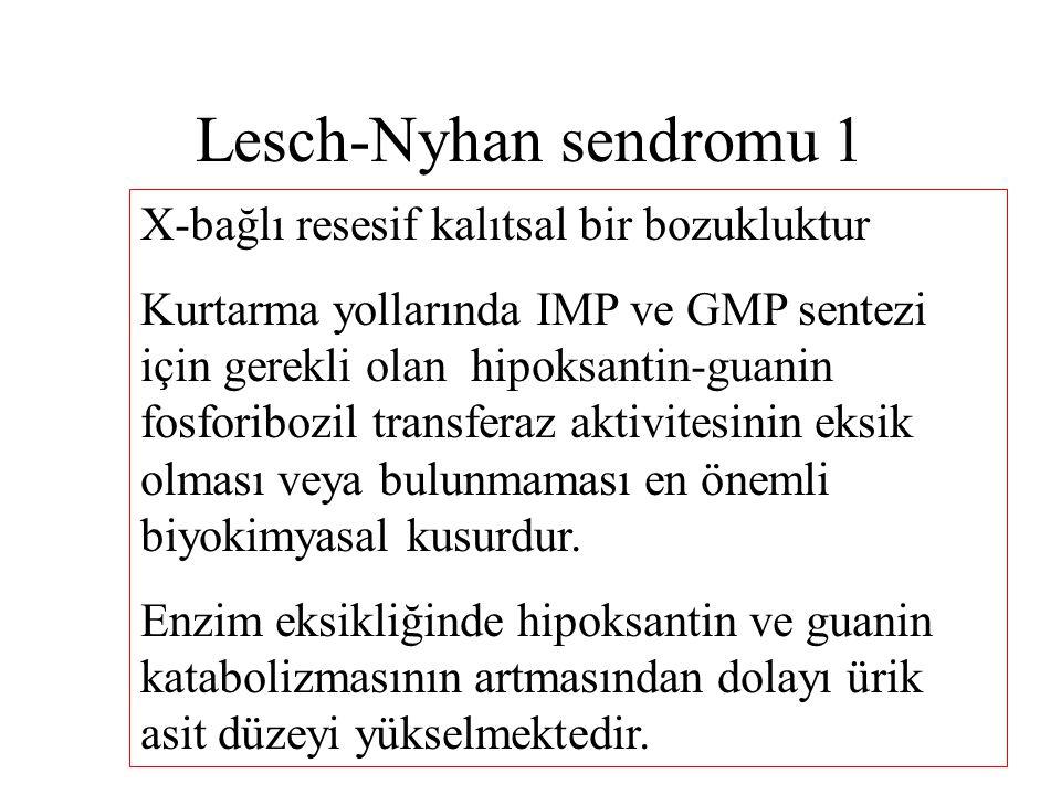 Lesch-Nyhan sendromu 1 X-bağlı resesif kalıtsal bir bozukluktur Kurtarma yollarında IMP ve GMP sentezi için gerekli olan hipoksantin-guanin fosforiboz