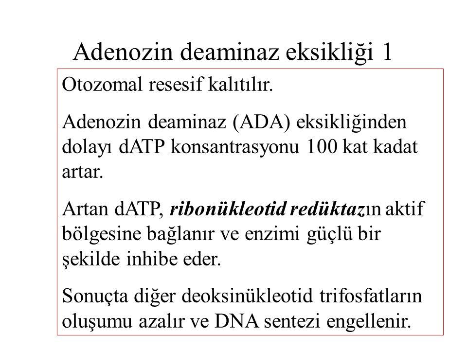 Adenozin deaminaz eksikliği 1 Otozomal resesif kalıtılır. Adenozin deaminaz (ADA) eksikliğinden dolayı dATP konsantrasyonu 100 kat kadat artar. Artan