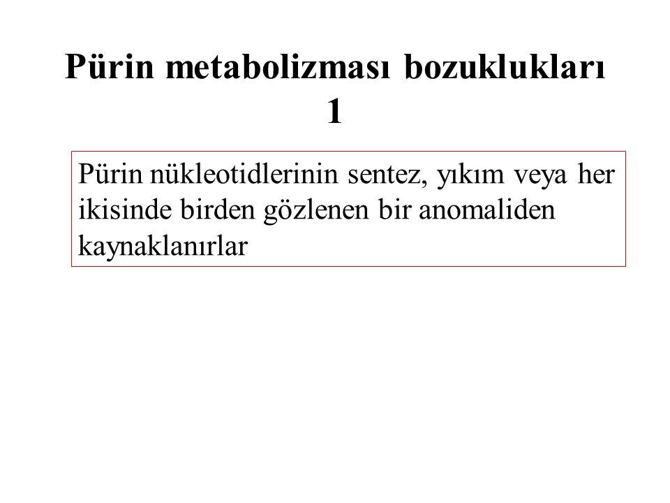 Pürin metabolizması bozuklukları 2 Gut hastalığı Lesch-Nyhan sendromu Anormal pürin metabolizması ile ilgili immün yetmezlik hastalıkları * Adenozin deaminaz eksikliği *Pürin nükleozid fosforilaz eksikliği Hipoürisemi