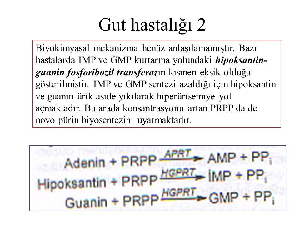 Gut hastalığı 2 Biyokimyasal mekanizma henüz anlaşılamamıştır. Bazı hastalarda IMP ve GMP kurtarma yolundaki hipoksantin- guanin fosforibozil transfer