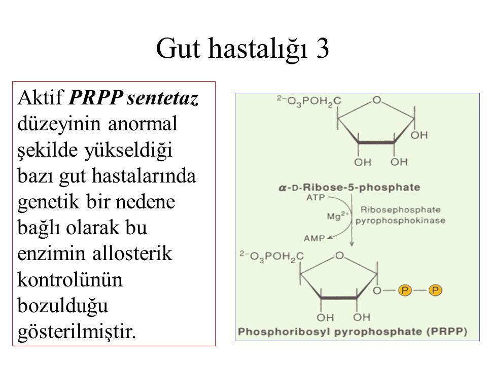Gut hastalığı 3 Aktif PRPP sentetaz düzeyinin anormal şekilde yükseldiği bazı gut hastalarında genetik bir nedene bağlı olarak bu enzimin allosterik k