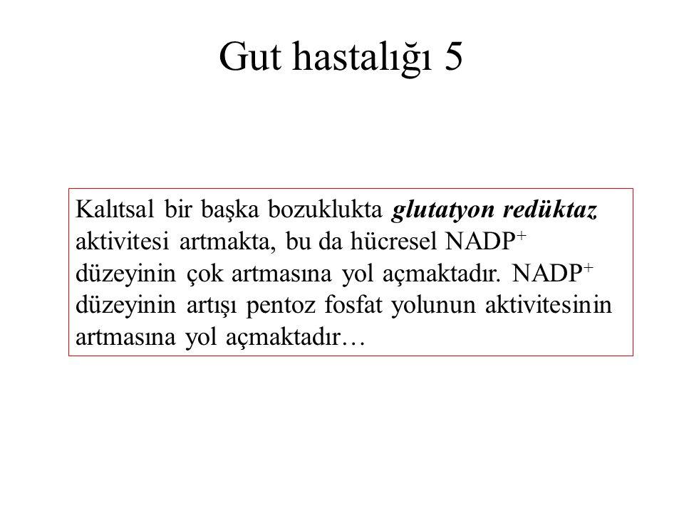 Gut hastalığı 5 Kalıtsal bir başka bozuklukta glutatyon redüktaz aktivitesi artmakta, bu da hücresel NADP + düzeyinin çok artmasına yol açmaktadır. NA
