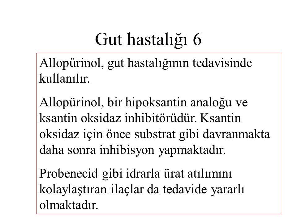 Gut hastalığı 6 Allopürinol, gut hastalığının tedavisinde kullanılır. Allopürinol, bir hipoksantin analoğu ve ksantin oksidaz inhibitörüdür. Ksantin o