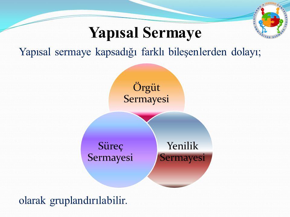 Yapısal Sermaye Yapısal sermaye kapsadığı farklı bileşenlerden dolayı; olarak gruplandırılabilir.