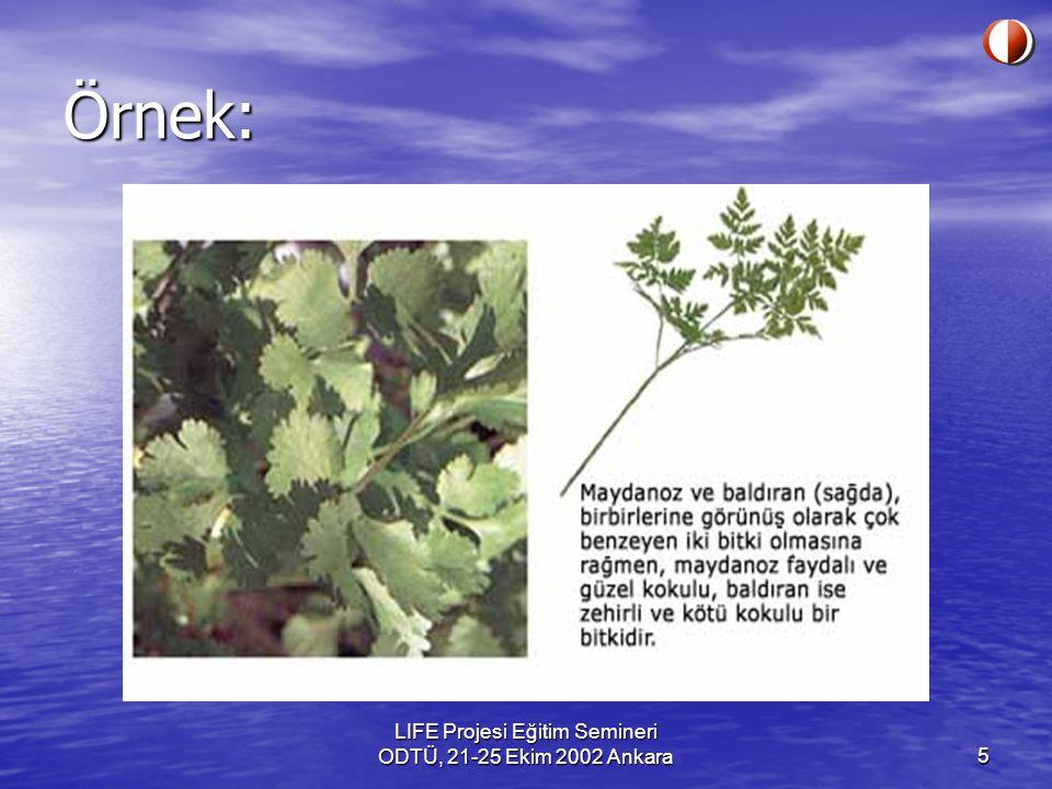 LIFE Projesi Eğitim Semineri ODTÜ, 21-25 Ekim 2002 Ankara5 Örnek: