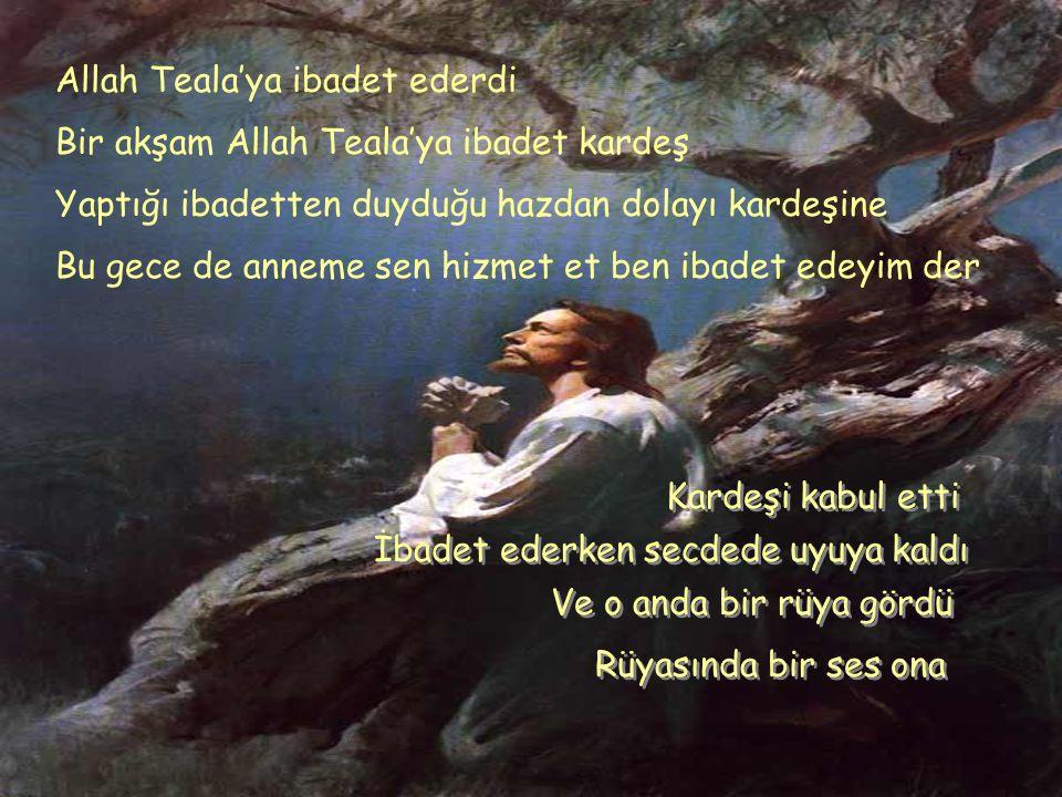 Allah Teala'ya ibadet ederdi Bir akşam Allah Teala'ya ibadet kardeş Yaptığı ibadetten duyduğu hazdan dolayı kardeşine Bu gece de anneme sen hizmet et