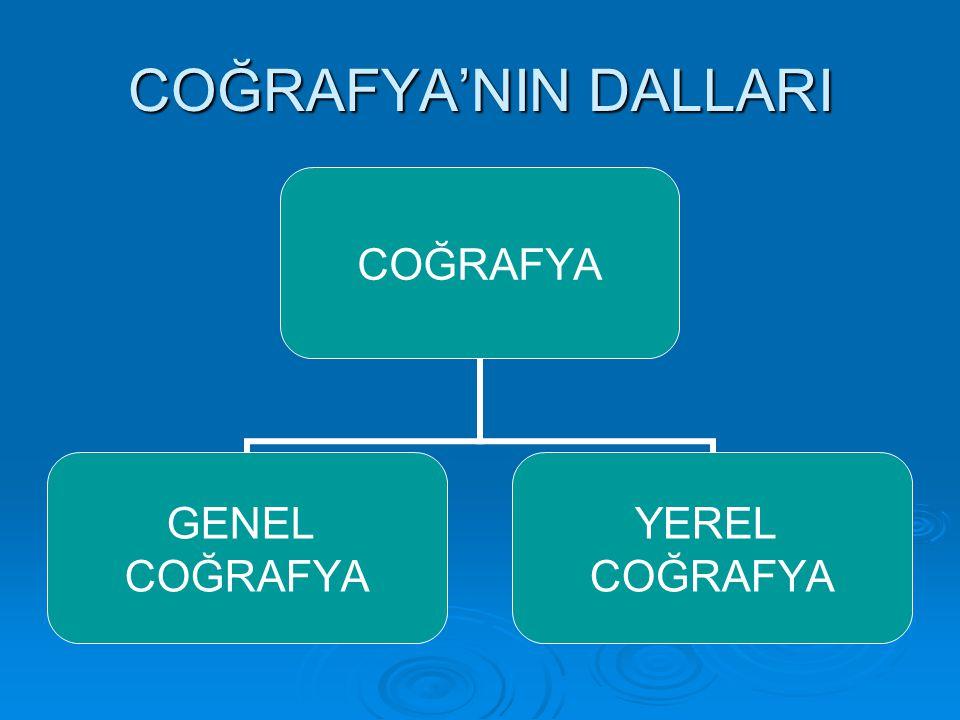 COĞRAFYA'NIN DALLARI COĞRAFYA GENEL COĞRAFYA YEREL COĞRAFYA