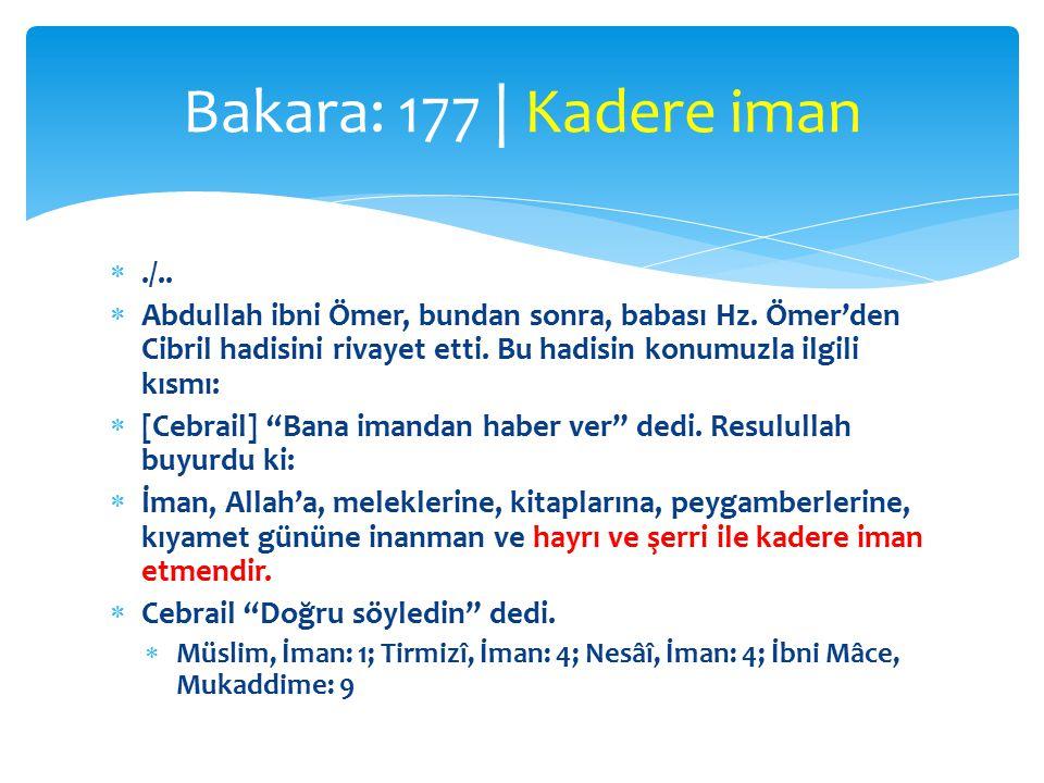 ./.. Abdullah ibni Ömer, bundan sonra, babası Hz.