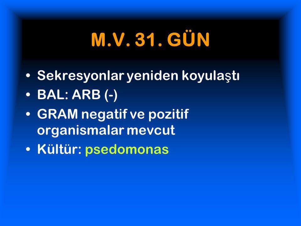M.V.31.