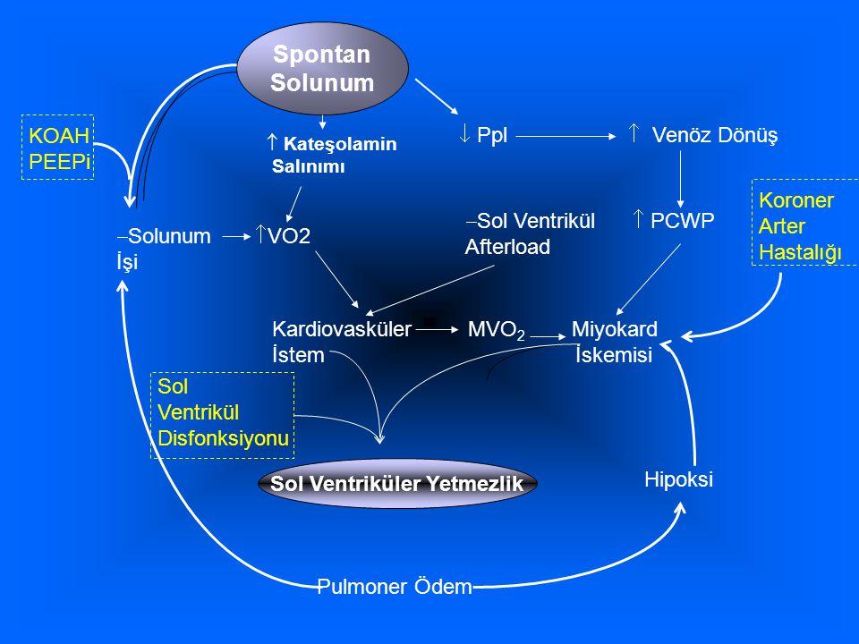 Spontan Solunum  Ppl  Venöz Dönüş  Sol Ventrikül  PCWP Afterload Kardiovasküler MVO 2 Miyokard İstem İskemisi Sol Ventriküler Yetmezlik Pulmoner Ödem KOAH PEEPi  Solunum  VO2 İşi Hipoksi Sol Ventrikül Disfonksiyonu  Kateşolamin Salınımı Koroner Arter Hastalığı