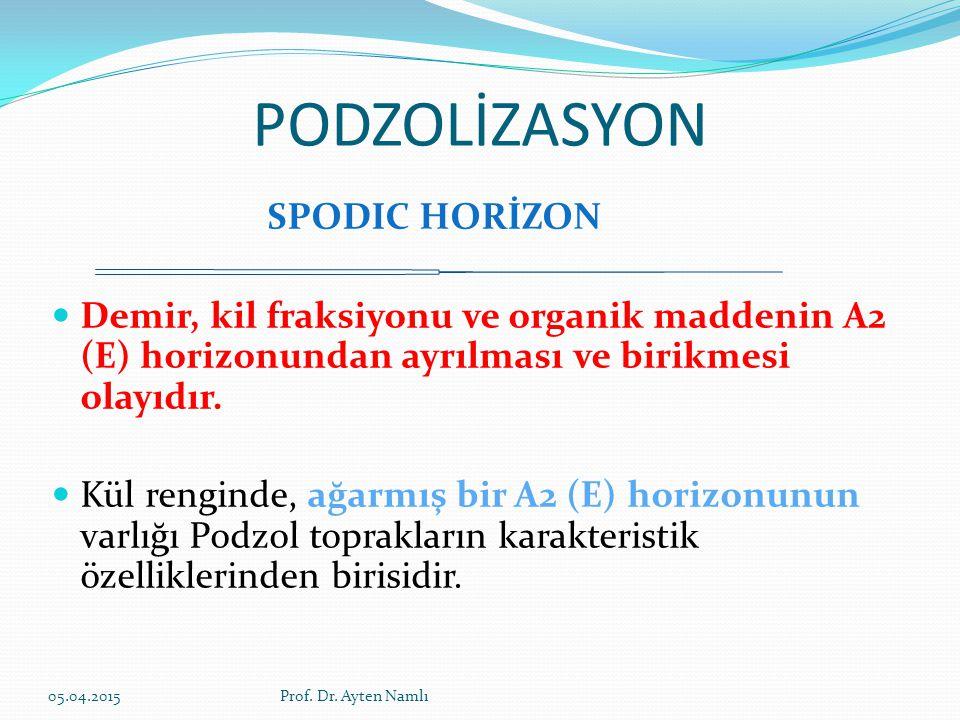 PODZOLİZASYON SPODIC HORİZON Demir, kil fraksiyonu ve organik maddenin A2 (E) horizonundan ayrılması ve birikmesi olayıdır. Kül renginde, ağarmış bir