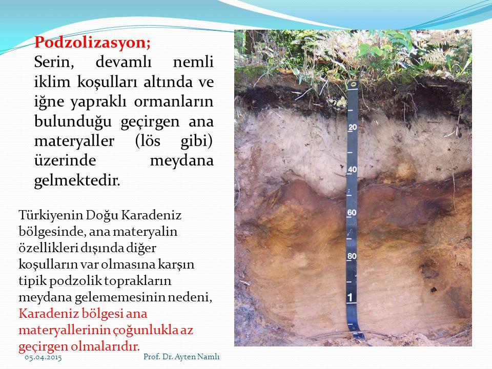 Podzolizasyon; Serin, devamlı nemli iklim koşulları altında ve iğne yapraklı ormanların bulunduğu geçirgen ana materyaller (lös gibi) üzerinde meydana