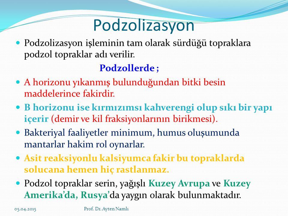 Podzolizasyon Podzolizasyon işleminin tam olarak sürdüğü topraklara podzol topraklar adı verilir. Podzollerde ; A horizonu yıkanmış bulunduğundan bitk