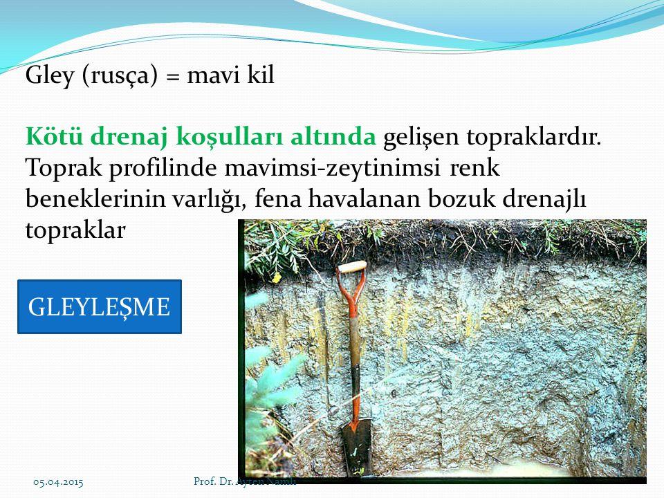 Gley (rusça) = mavi kil Kötü drenaj koşulları altında gelişen topraklardır. Toprak profilinde mavimsi-zeytinimsi renk beneklerinin varlığı, fena haval
