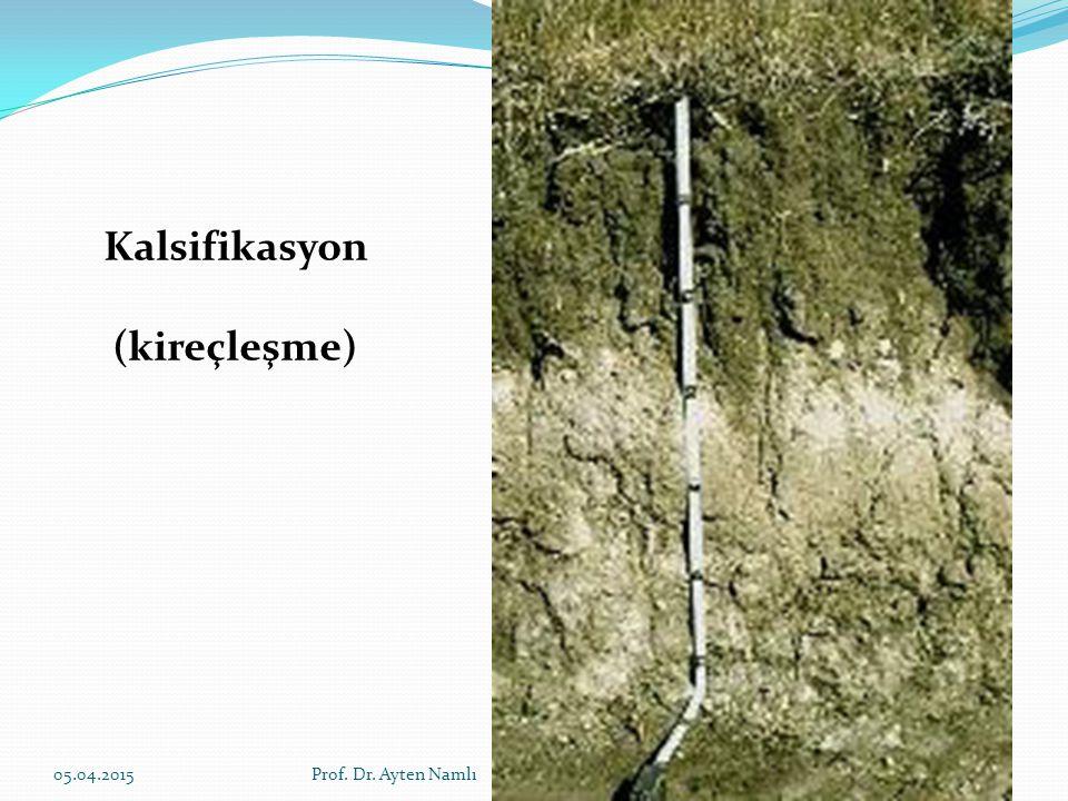 Solonizasyon (alkalileşme) Toprak profilindeki eriyebilir tuzların C horizonunun derinliklerine doğru tamamen yıkanmasından hemen sonra, tamamen sodyum ile doygun bulunan komplekste bir seri reaksiyon meydana gelir.