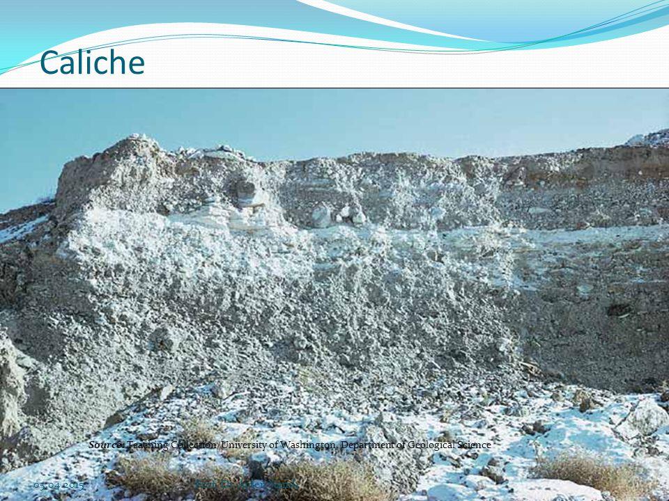 İklim, bitki örtüsü, toprak ve topografya koşullarına bağlı olarak toprak profilinin farklı derinliklerinde özellikle kirecin (CaCO3)'in birikmesine neden olan toprak oluş işlemidir.
