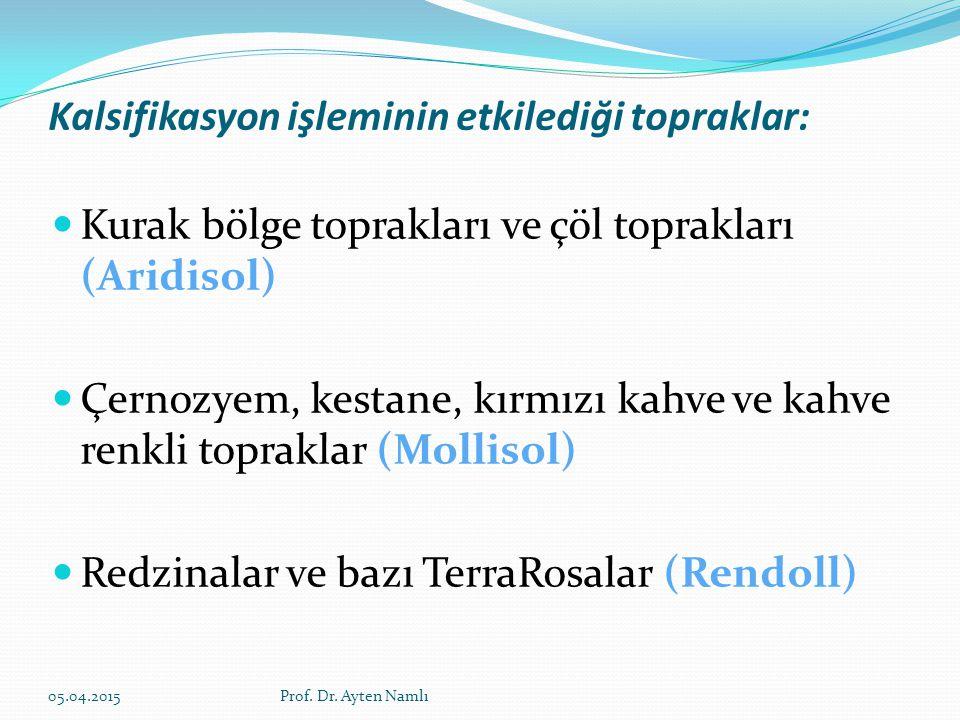 PODZOLİZASYON SPODIC HORİZON Demir, kil fraksiyonu ve organik maddenin A2 (E) horizonundan ayrılması ve birikmesi olayıdır.